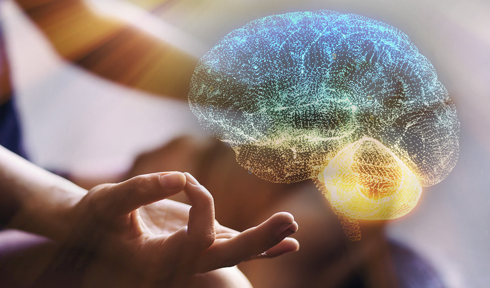 meditacao-cerebro-universo-empatico